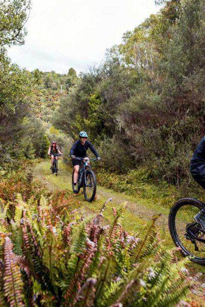 Tongariro e-Bike Adventure